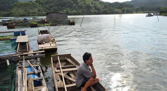 一名网箱养鱼户守在船上等待打捞被污染的死鱼