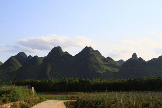 广西乡下常有绿树青山 图片来源:新浪博客