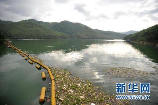 广西贺江水体污染事件