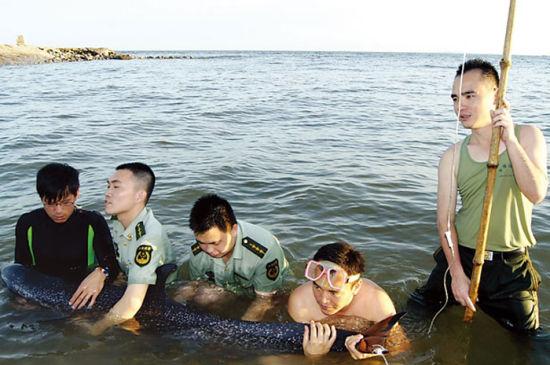 边防官兵和动物专家在给海豚输液。吴岩 摄