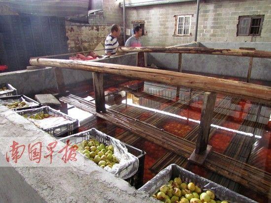 环保工作人员在红枣作坊里调查。 南国早报记者 周群能摄