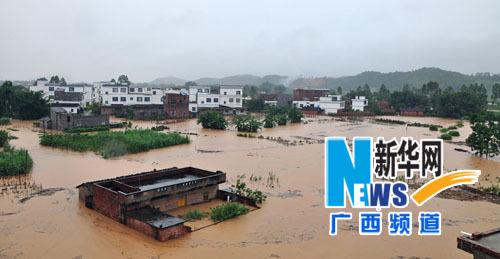 来宾象州遭受严重洪涝灾害房屋被毁农作物被淹