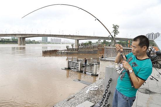 一名爱好者在大坑口江边钓鱼。南国早报记者唐辉吉 摄