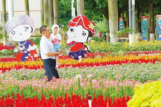 南宁市民族广场上,市民悠闲漫步。南国早报记者 邹财麟摄