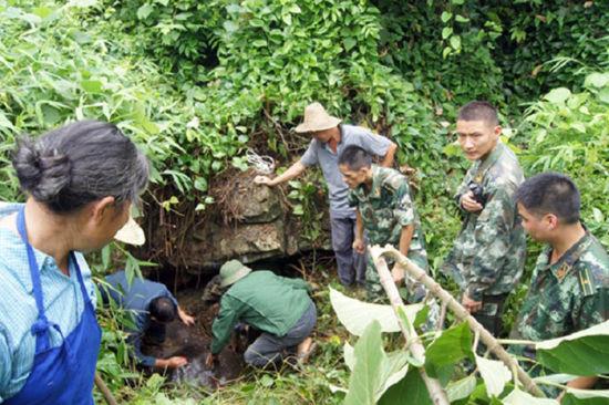 民警将水牛击毙在水坑里。