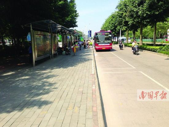 因公交站迁移,动物园大门前的停车位实际已被取消。南国早报记者 罗暘 王春楠 摄