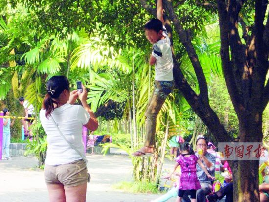 南宁市人民公园内,一名男孩抓住树枝悬吊在空中,让家人为其拍照。南国早报记者 王春楠 摄