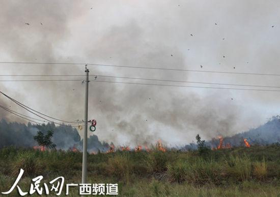 火灾现场。图片来源:人民网