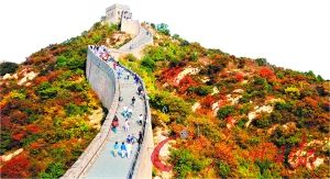 资料图 图源:中国新闻网