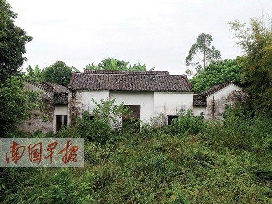 北王韦昌辉的故居杂草丛生。南国早报记者 骆南华 摄