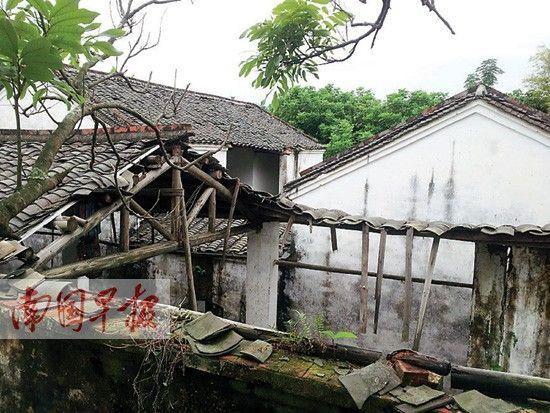 金田起义遗址纪念馆内荒草密集。南国早报记者 骆南华 摄