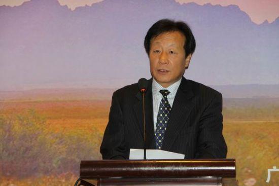 自治区旅游局副局长贾玉成介绍广西旅游业发展情况