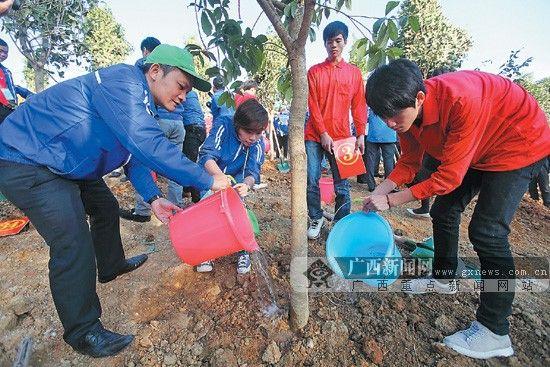 图为中越青年种下友谊林。广西日报记者 唐正芳 通讯员 潘金强 摄