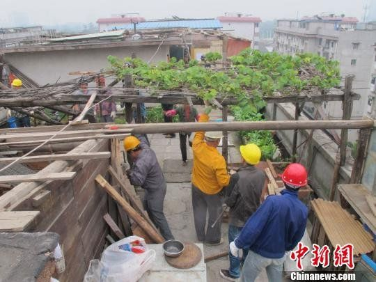 图为执法人员对楼顶违建进行拆除清理。中新网 朱开健 摄