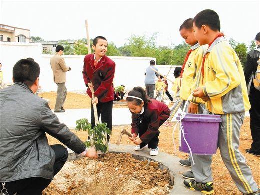 城乡孩子共同种下友谊树