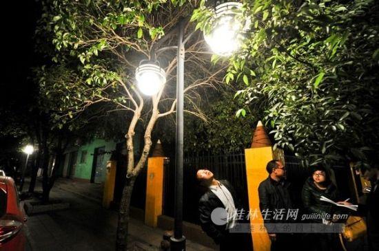 图为桂林九岗岭小区里装上了LED路灯。桂林晚报 记者 游拥军 摄