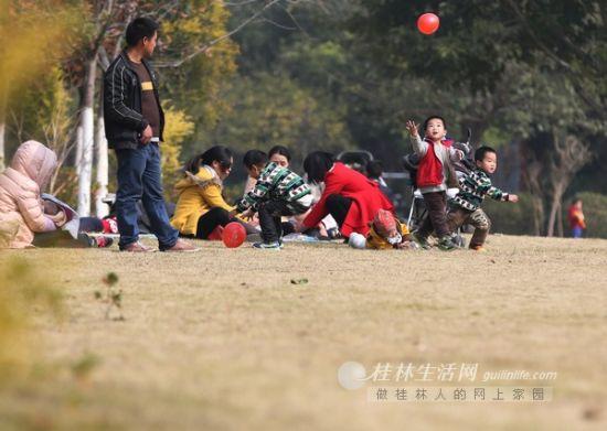 不少家长带着孩子在訾洲公园内的大草坪上玩耍休闲 记者李凯 摄