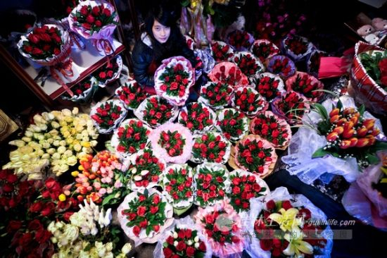 鲜花产地下大雪桂林花价涨幅突出(图)