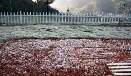 广西持续出现霜冰冻天气。