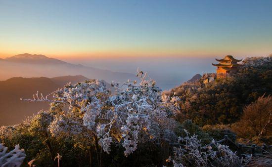 1月14日,初升的太阳照在挂满雾凇的树枝上,远处的骆越王庙沐浴在金色的晨光中。1月14日拍摄于广西大明山观日台。