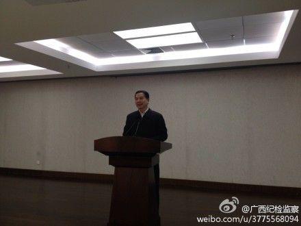 自治区纪委常委、秘书长、新闻发言人何敏在新闻发布会上通报2013年广西纪检监察机关查办案件情况。