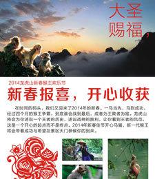 龙虎山猴王欢乐节