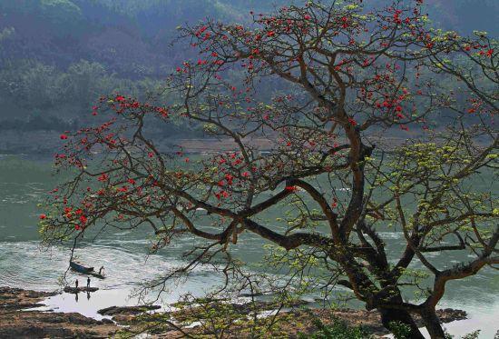 红水河水上游。