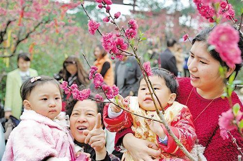 市民游客在青秀山桃花岛观赏桃花。 本报记者周家志 摄