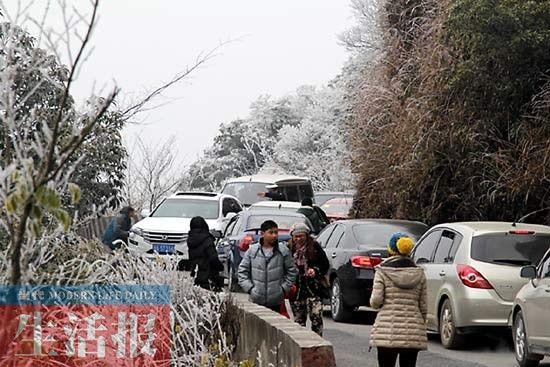 """一些游客下车步行上山(图片由网友""""仙人掌""""拍摄)"""