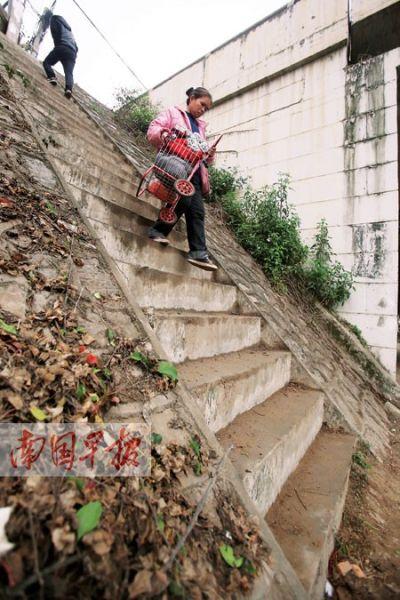 图为一女士抱着菜篮艰难地走下阶梯。记者 邹财麟摄