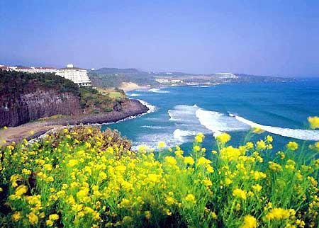韩国济州岛