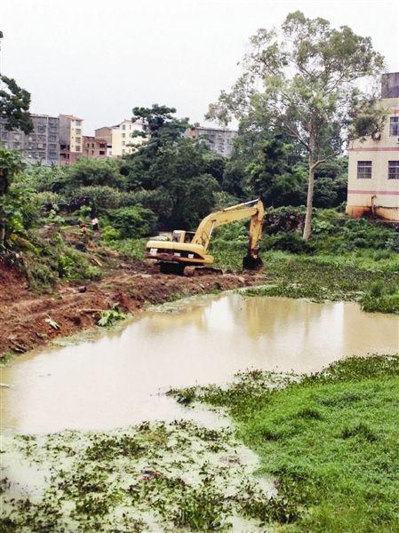 武鸣县水政部门动用大型机械清理河道里的水葫芦。