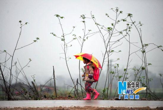 3月11日,在广西柳州市门头路,一名小学生在雨雾中放学回家。新华社记者 黄孝邦 摄