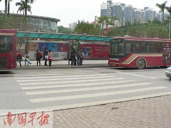 民族大道荣和山水美地公交站,斑马线恰好与公交站交叉。记者 王春楠摄
