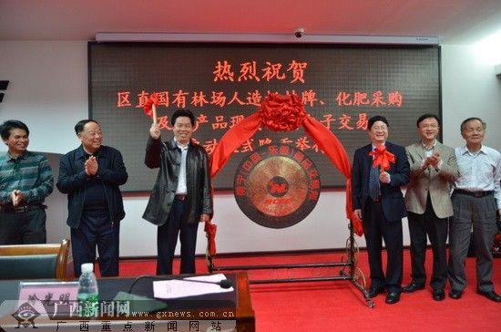 各方代表为交易会鸣锣启动。广西新闻网记者 罗莎 摄