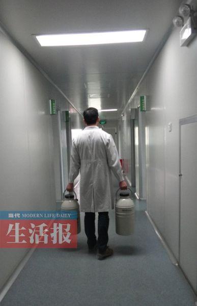 医务人员将人类精子库运来的精子入库储存。图片来源:当代生活报