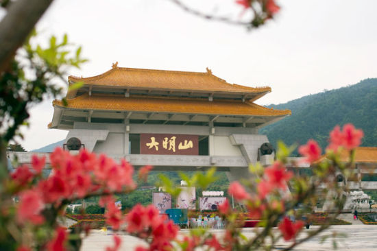 大明山杜鹃花节 图:大明山景区