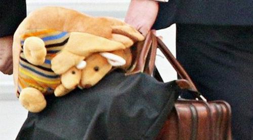 乔治王子的袋鼠背包
