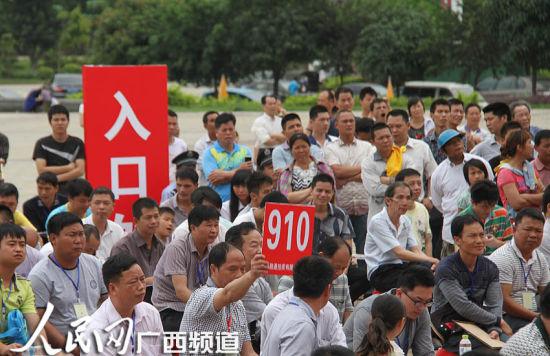 南宁首场公车拍卖会在广西-东盟经开区举行 63辆车拍得287万