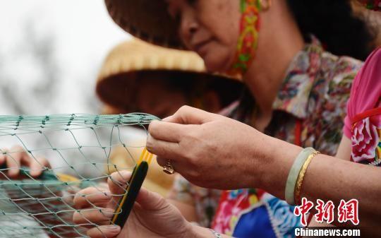 渔妇手中的织梭在网眼间游走。翟李强 摄