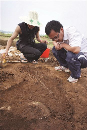 考古专家在凌屋村贝丘遗址中展开发掘工作。南国早报记者 龚文颖 摄