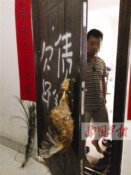 死鸡被挂在门把手上。记者 苑长军摄