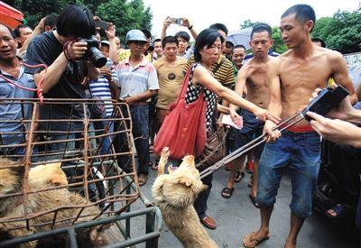广西玉林,一名狗贩现场虐杀小狗,志愿者花钱买下。