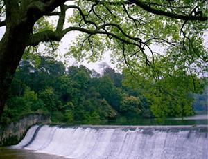 良凤江国家森林公园 融入自然氧吧