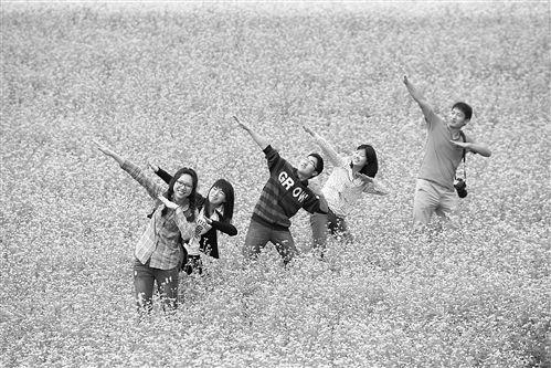 隆安更望湖边,游人在花海中留影 图片来源:新华网广西频道