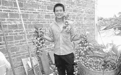 何扬广展示着自家的鲜果。 刘慧 摄