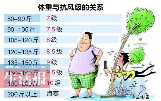 体重与抗风级的关系