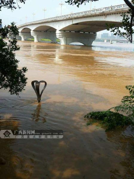 邕江大桥左侧岸边的一个景观灯已经被洪水淹没一大半。广西新闻网记者 胡雁 摄。