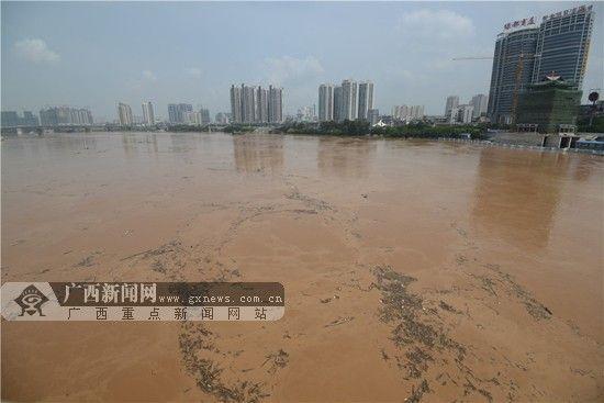 邕江水位大面积上涨。广西新闻网记者 胡雁 摄