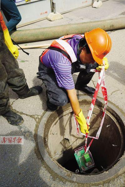每次下井前,都要用小白鼠检测井下是否有毒性气体。唐辉吉 摄